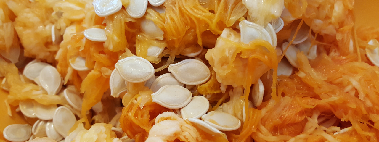 The orange inside of a pumpkin, including the seeds. We offer different kinds of nuts and seeds in our Food Ingredients Solutions.