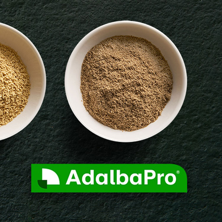 AdalbaPro Insect protein